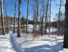During the winter, a 5 km trail follows the Mistassibi River. Perfect for a snowshoeing trip :)