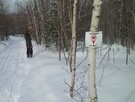 Marked snowshoe trails and cross-country skiing free of charge, within one km from our cottage
